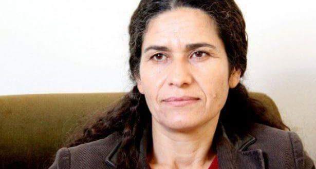 استجابة جزء من المجلس الوطني الكردي للمبادرة توحيد الصف الكردي أمر إيجابي